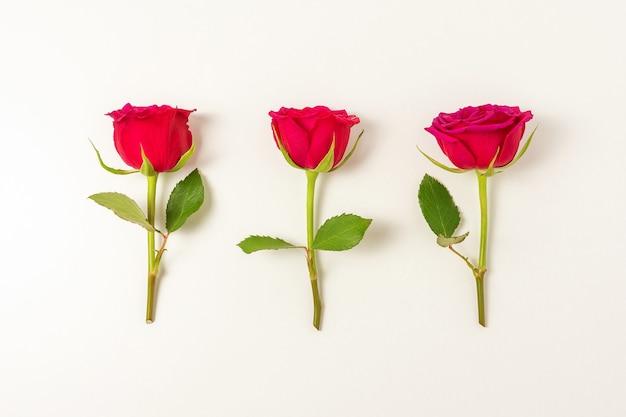 Creatieve compositie van rood roze bloemen op wit oppervlak.