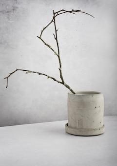 Creatieve diagonale isometrische projectiesamenstelling met boomtakmos en grijze betonnen bloempot