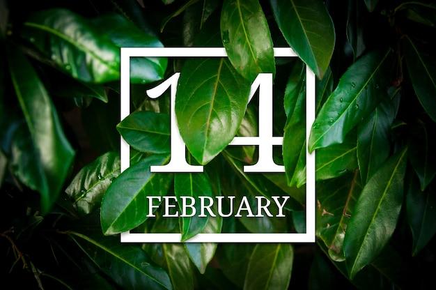 Creatieve groene bladeren samenstelling met wit frame en datum voor valentijnsdag