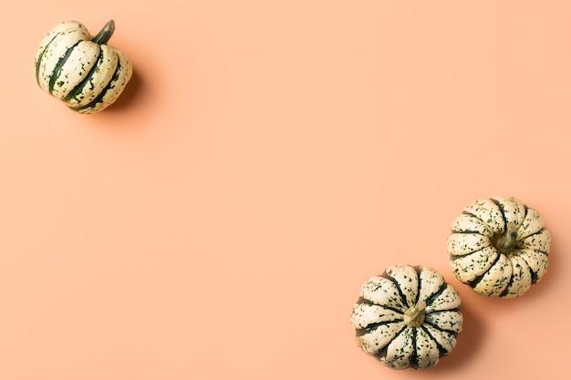 Creatieve herfst herfst thanksgiving dag compositie met decoratieve pompoenen. plat lag, bovenaanzicht, kopieer ruimte, stilleven koraal roze achtergrond voor wenskaart