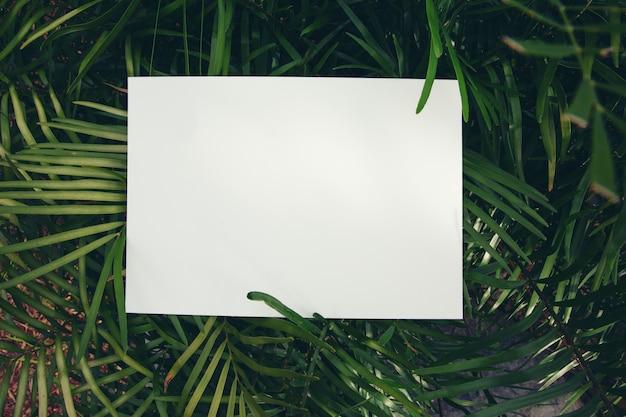 Creatieve lay-out gemaakt van bladeren met papieren notitie. plat leggen. natuur concept