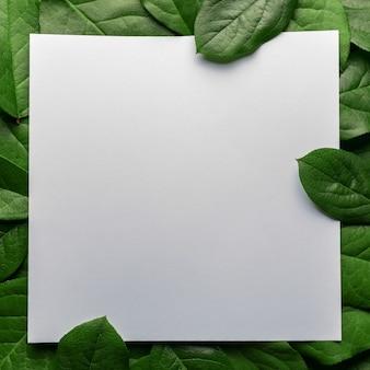 Creatieve lay-out gemaakt van groene bladeren met papieren kaartnota