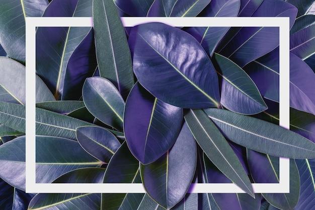 Creatieve lay-out gemaakt van paarse bladeren met papieren kaartnota