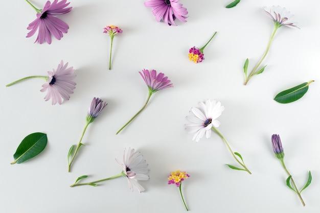Creatieve lente lay-out gemaakt van kleurrijke bloemen en bladeren op witte achtergrond