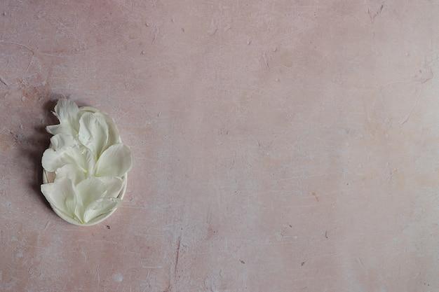 Creatieve mockupsamenstelling van witte pioenbloemblaadjes op een roze verouderde betonnen achtergrond.
