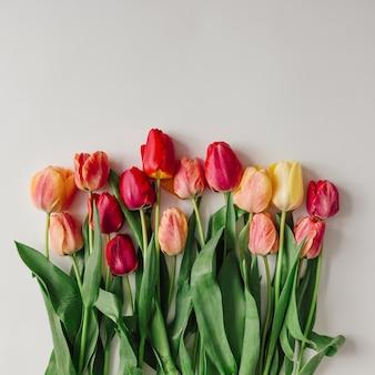 Creatieve opstelling van tulpen op witte muur. plat leggen.