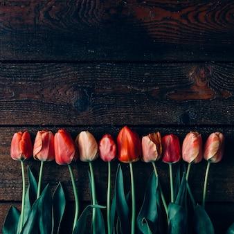Creatieve opstelling van tulpen op zwarte muur. plat leggen.