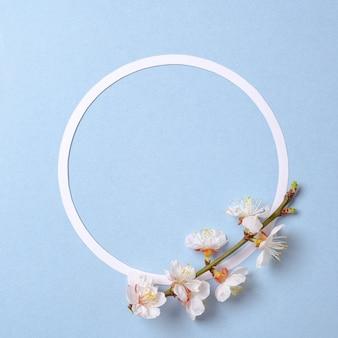 Creatieve plat lag samenstelling: cirkel blanco papier en bloeiende sakura tak