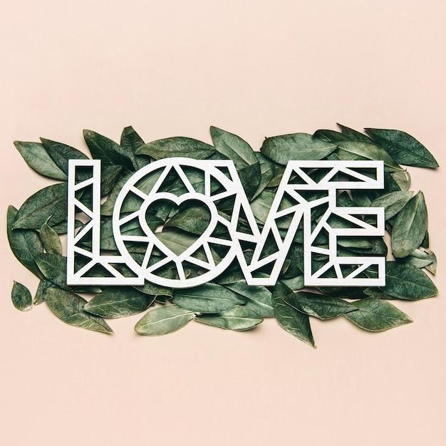 Creatieve plat leggen van woord liefde op zachte kleur achtergrond met natuurlijke bladeren.