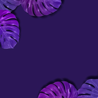 Creatieve tropische lay-out met patroon met gradiëntmonsterbladeren. violette beeldtoning