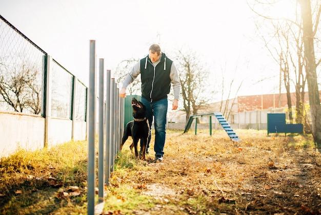 Cynoloog met snuffelende hond, buiten aan het trainen