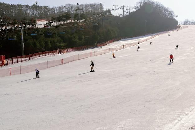 Daemyung vivaldi park skigebieden, attracties, beroemd en populair in korea