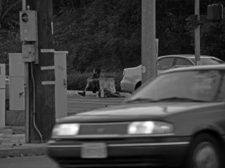 Daklozen in amerika (afbeelding 1 van 2)