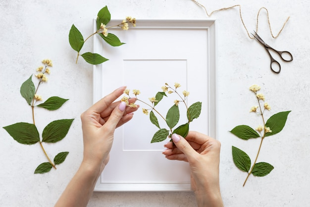 Dames handen versieren een herbarium van bloemen in een lijst voor foto's. botanische illustraties in woondecoratie. plat lag. witte betonnen achtergrond