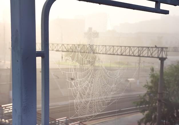 Dauw op spinnetten in de ochtendstralen op de onscherpe achtergrond van de pilaren van het treinstation. novosibirsk, siberië, rusland