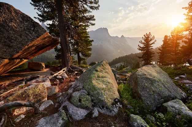 Dawn in de berg van het siberische natuurpark
