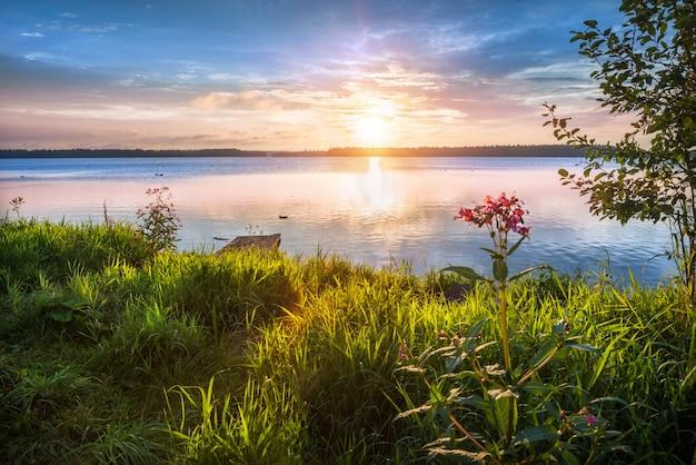 Dawn in valdai en het gras aan de kust