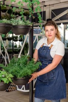 De aantrekkelijke jonge de koffiekasbloemen van de meisjesschort ontwerpen binnenlandse partij vele potten verschillende installaties portret groene mensenbloemisten werken parttime het gebladerte van tuinbladeren