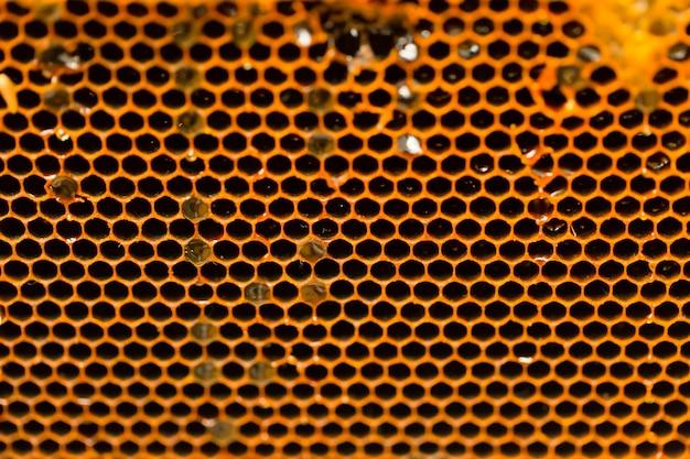 De achtergrond van de de close-uptextuur van het honingraatbijenhuis