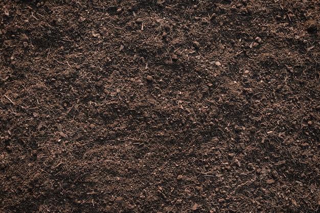 De achtergrond van de grondtextuur, vruchtbare leemgrond geschikt om te planten.