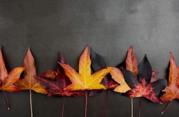 De achtergrond van de herfst. grens van kleurrijke herfstbladeren tegen donkere achtergrond.