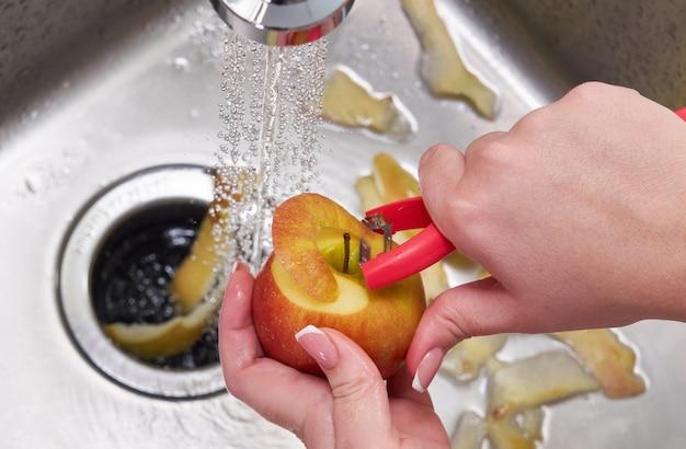 De afvalverwijderingsmachine van het voedsel in gootsteen in moderne keuken