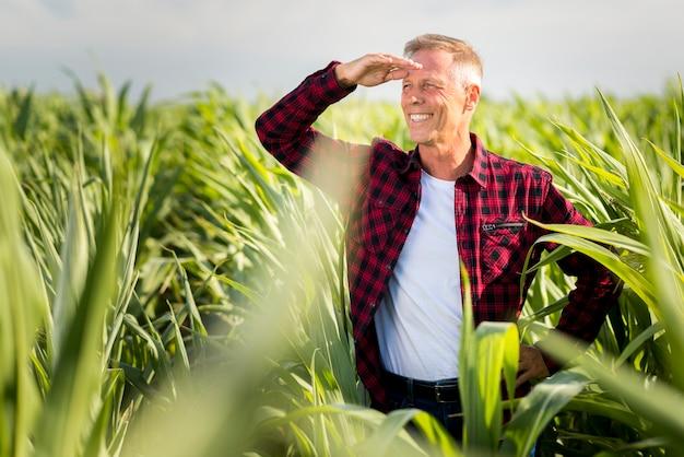 De agronoom van smiley die weg in cornfield kijkt