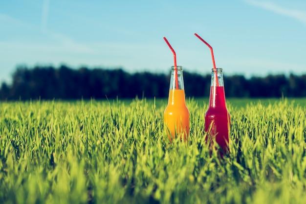 De alcoholische rode en oranje verse drank van partijcoctails in flessen die zich in de zomergras bevinden met stro