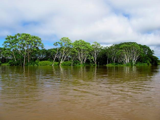 De amazone-rivier in peru, zuid-amerika
