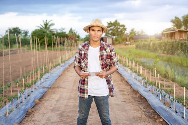 De aziatische slimme tablet van de landbouwersholding in zijn organisch landbouwbedrijf.