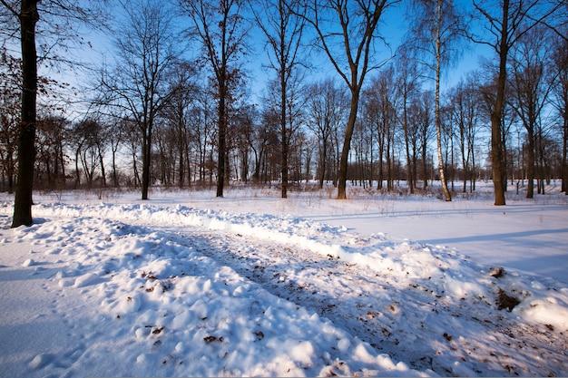 De baan die na de voorbijgereden auto op de met sneeuw bedekte weg is gebleven. winter