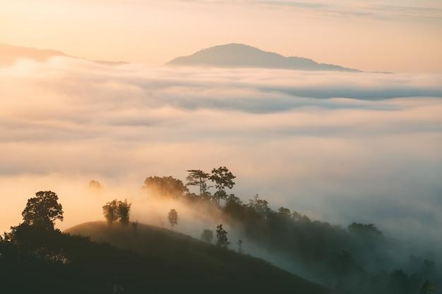 De bergmening van het landschap van yun lai viewpoint met mist in pai thailand