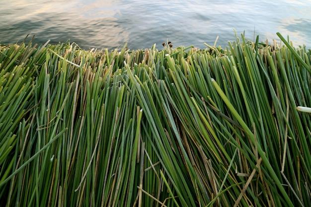 De beroemde drijvende eilanden van uros, gebouwd met totora-riet, het titicacameer, puno, peru