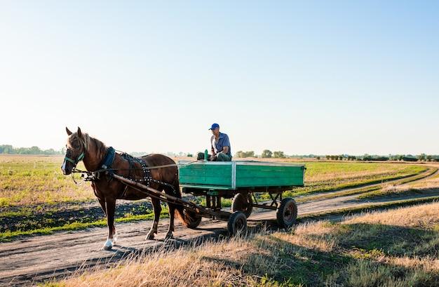 De boer rijdt op een kar. oud vervoer.