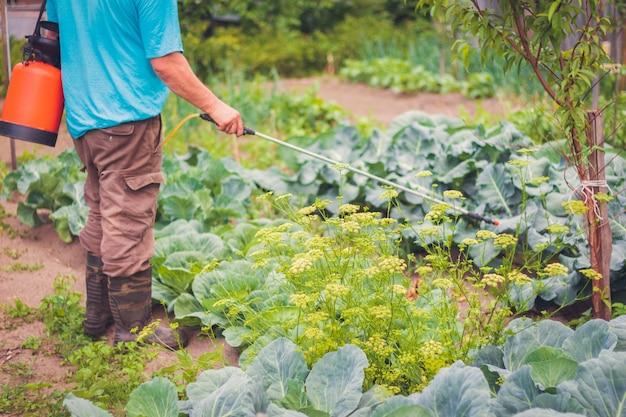 De boer spoot medicijnen voor groenten in de tuin