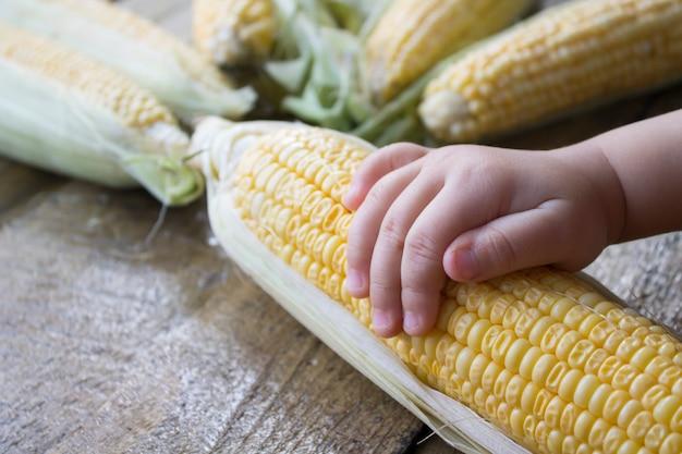 De boer van de meisjesholding oogst een maïskolven