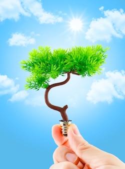 De boom van de handholding het groeien op gloeilamp met lichtblauwe hemel met wolk, ecoconcept, ecomacht
