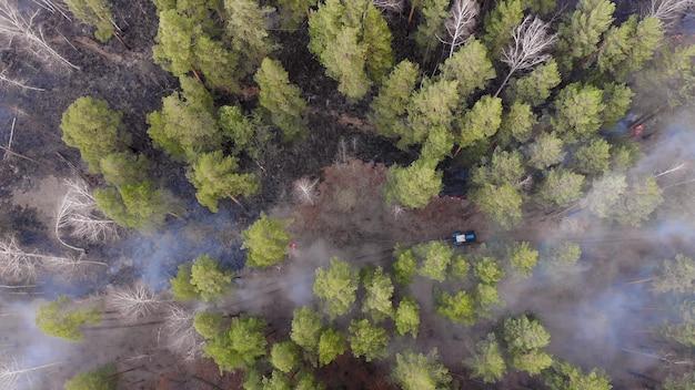 De bosbrand brandt.