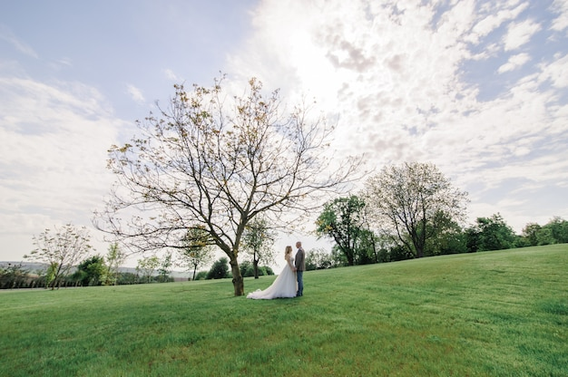 De bruid en bruidegom houden elkaars handen vast. een man en een vrouw kijken elkaar in de ogen. vanuit een verre hoek genomen.