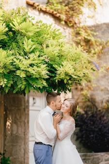De bruid en bruidegom knuffelen op een pittoreske binnenplaats onder groene takken, de bruidegom kust de bruid
