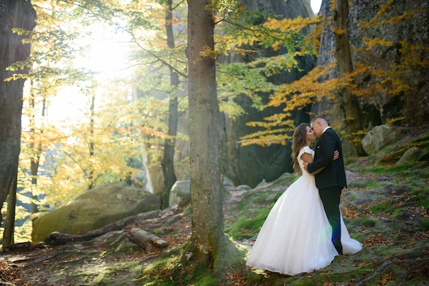 De bruid en bruidegom knuffelen tussen de rotsen en bomen