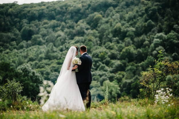 De bruid en bruidegom met een bruidsboeket, hand in hand en terugkijkend op bergen.