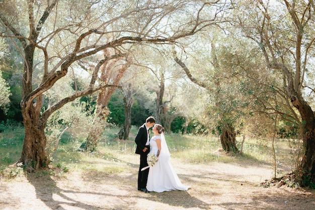 De bruid en bruidegom omhelzen elkaar in een olijfgaard