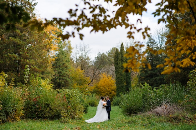 De bruid en bruidegom op de achtergrond van de herfst park