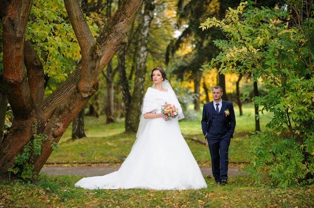 De bruid en bruidegom op herfst park.