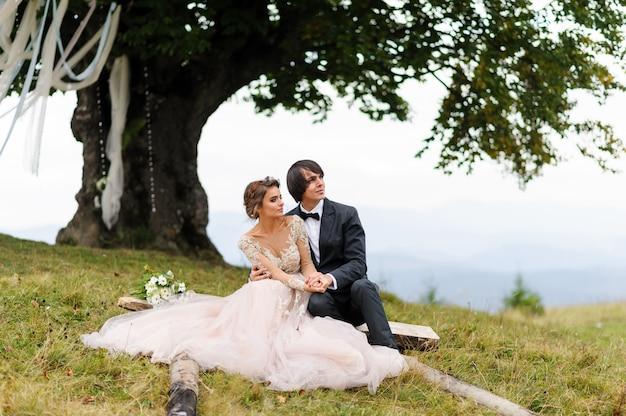 De bruid en bruidegom zitten op een logboek onder een oude eik. bruiloft fotoshoot in de bergen.