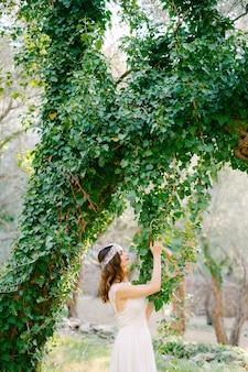 De bruid staat naast de prachtige boom bedekt met klimop en raakt de hangende klimop in een