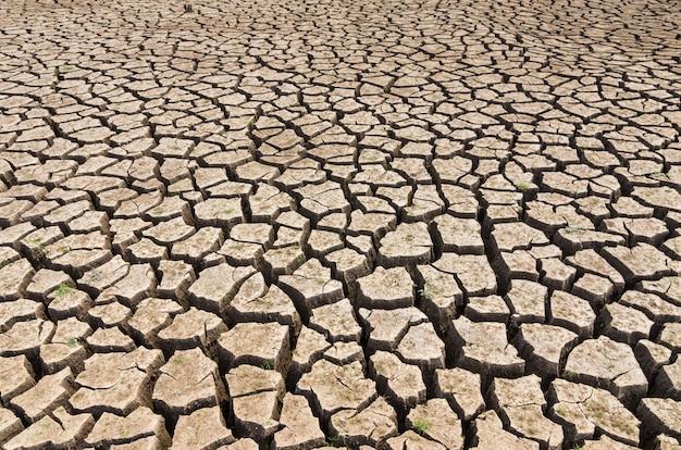 De bruine grond die is gebarsten is diep vanwege de droogte.