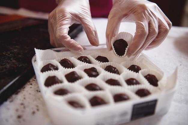 De close-up van chocolatier dient witte transparante handschoenen in die chocoladetruffels in doos verpakken.