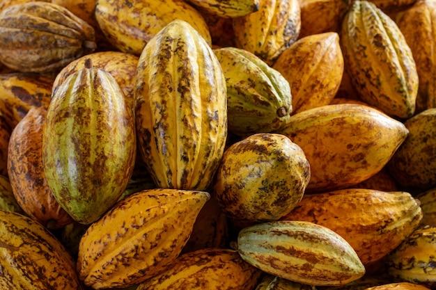 De close-up van de cacaobonenstapel
